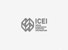 ICEI - Instituto de Cooperação Económica Internacional