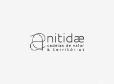 Nitidae
